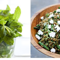 Spring Wheat Berry Salad with Spinach Pesto