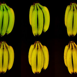 Life by Richard Timothy Pyo - Food & Drink Fruits & Vegetables ( fruit, old, life, indoor, green, bananas, yellow, young, black )