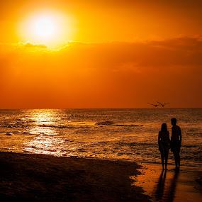 Sunset in Varadero by Jack Brittain - Landscapes Sunsets & Sunrises ( sunset, couple, ocean, beach, varadero, atlantic, silohette, people, pelican, evening, cuba,  )