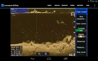 Screenshot of Lowrance GoFree Controller