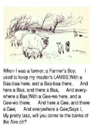 農民的男孩