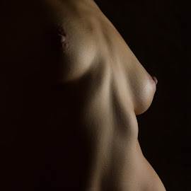 Reticulating Splines by Don Valentine - Nudes & Boudoir Artistic Nude ( breast, nude, female, nipple, low light, skin, caucasian, abdomial )