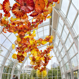 Glass Room, Dale Chihuly Sculpture by Phyllis Plotkin - Artistic Objects Glass ( sculptures, girl, glass, windows )