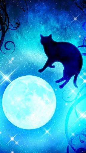 月と黒猫★キラキラ 夜空