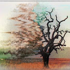 by Amanda Coertze - Digital Art Abstract ( digital art,  )