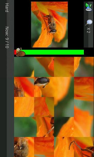 玩免費休閒APP 下載拼图游戏(高清)图集(美丽小自然主题) app不用錢 硬是要APP