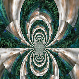Tail of the Peacock by Linda Blevins - Abstract Patterns