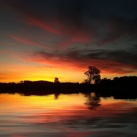 Sunset 3 by Angelica Glen - Landscapes Sunsets & Sunrises ( water, clouds, sunset, trees, night, lake )