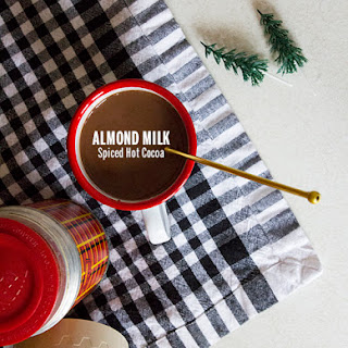 Almond Milk Spiced Hot Cocoa