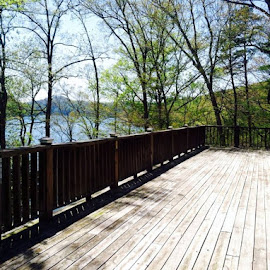 Easter view from my parents Lake house... God how I adore Norris Lake... by Keri Butcher - Novices Only Landscapes