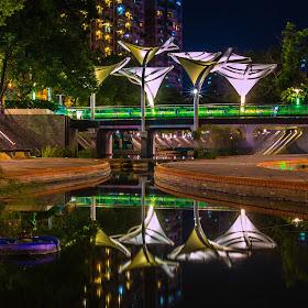 103-08-12#2酷似海芋花街頭造景,點綴著夜色、亮麗了起來.jpg