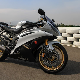 R6 by Renato Marques - Transportation Motorcycles ( yamaha, bike, white, r6 )