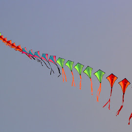Kites by Anjan Acharya - Abstract Patterns ( sky, pattern, fly, kite, perspective, repeat )