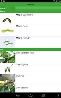 Screenshot of Tree Identification