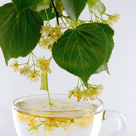 Linden tea by Max Feshchenko - Food & Drink Alcohol & Drinks ( cup, cup of tea, limeflower, tea, linden, linden tea )
