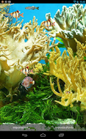 Screenshot of aquarium live wallpaper free