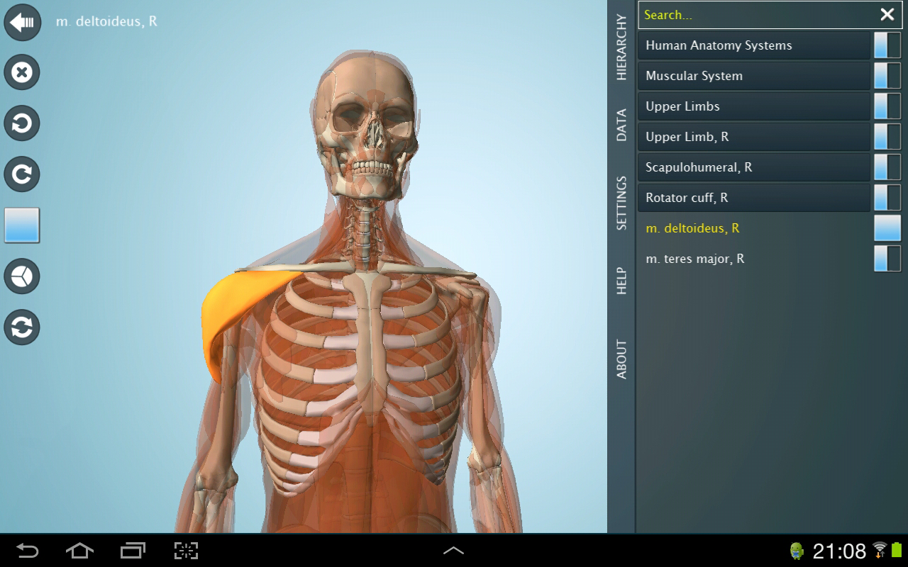 Anatomy 3D Pro - Anatronica Screenshot 9
