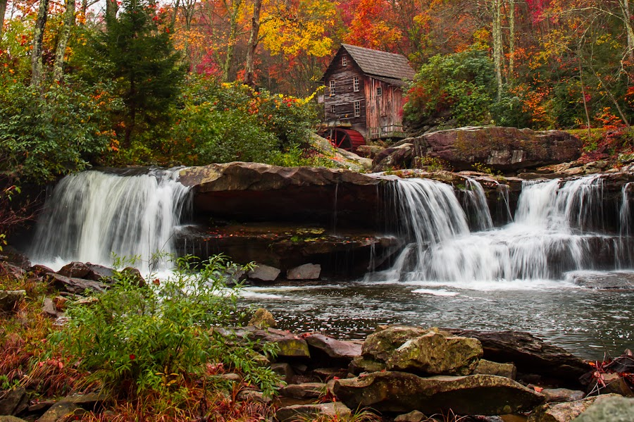 Babcock State Park by Julio Torres - Landscapes Waterscapes ( red, west virginia, fall, leaves )