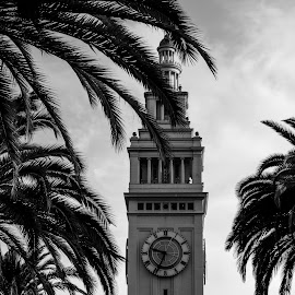 by William Stansbury - Buildings & Architecture Other Exteriors ( tower, black and white, clock, california, wharf, san francisco,  )