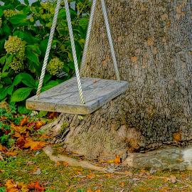 The Old Wooden Swing by Barbara Brock - Artistic Objects Toys ( single seat swing, swing on a rope, wooden swing, swing in a tree )