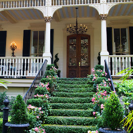 Inviting stairs by Todd Radney - City,  Street & Park  Historic Districts