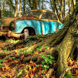 Car Cemetary by Lukas Proszowski - Transportation Automobiles ( car, old, rotten, nature, tradition, old-timer, forest, rust, abandoned,  )