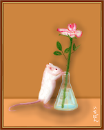 Mouse and Rose