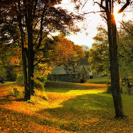 by Gem Blue - Landscapes Prairies, Meadows & Fields ( walking path, autumn, colorful leaves )