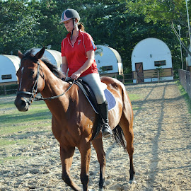 Horse Riding #1 by Koh Chip Whye - Sports & Fitness Other Sports (  )