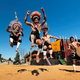 Flying Zeliangs by Vikramjit Kakati - People Group/Corporate ( hornbill, zeliang, naga, india, festival, nagaland )