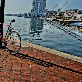 Left Alone and Waiting by Barbara Brock - Transportation Bicycles ( bike, sailing, bay, wharf, sailboat, bicycle )