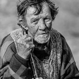 Shepherd waiting by Cristi Rus - People Portraits of Men ( shepherd, black and white, people, man, portrait )