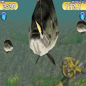 Free Real Fishing games APK for Windows 8