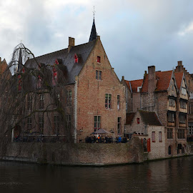 Bruges by Anela Paparevic- Felegyhazi - City,  Street & Park  Historic Districts ( water, houses, colors, belgium, cityscape, architecture, canal, city, center, roof, tree, buildings, bricks, brugge, medieval,  )