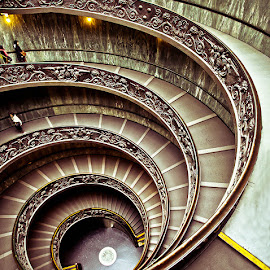 Vatican Museum by Qi Yang - Buildings & Architecture Other Interior ( stairs, swirl, staircase, museum, vatican, italy )