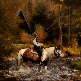 My dream about river by Ruda Stančík - Digital Art Places ( water, cowboy, nature, horse, forest, roe, river )