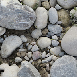 River rocks in Munich, Germany by Lori Rider - Nature Up Close Rock & Stone ( up close, munich, germany, stones, rocks, river )