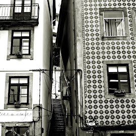 Entre as casas by Lia Ribeiro - Buildings & Architecture Homes