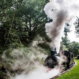 Tanfield Railway by Hippie Lee Nixon - Transportation Trains ( tanfield railway, stanley, steam engine, tanfield, railway, engine, train, trains, hippie nixon photography )