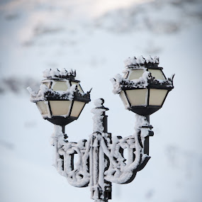 Frozen Lamps by . Reedd2 - Artistic Objects Still Life ( sierra nevada, ice, sunsets, snow, , winter, cold )