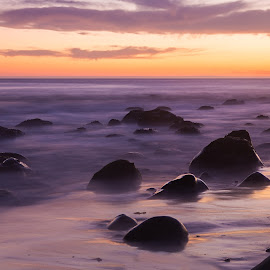 Purple Haze  by Angel McNall - Landscapes Beaches ( misty water, santa barbara, purple, california, sunset, beach, coastal, california coast,  )