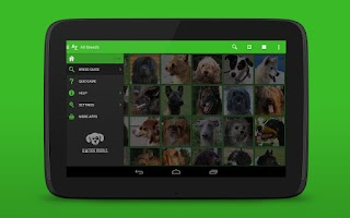 Screenshot of iKnow Dogs 2 LITE