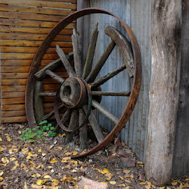 Wheel by Yael Hylton - Buildings & Architecture Decaying & Abandoned