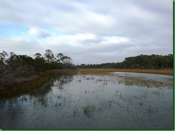Hunting Island with Nancy & Bill (41)