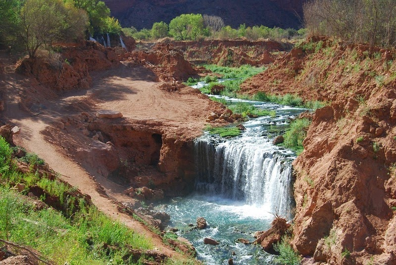 havasu-creek-falls-7