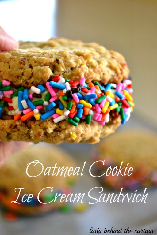 Lady-Behind-The-Curtain-Oatmeal-Cookie-Ice-Cream-Sandwich-3 (1)