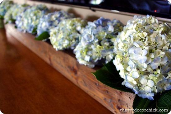 hydrangea in DIY long wood box