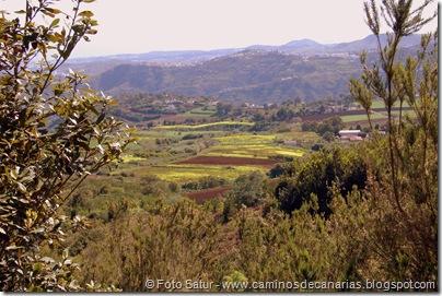 5261 La Laguna-Arucas