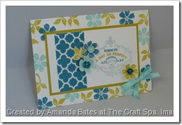 Blooming Marvellous, The Craft Spa, SAB 2013, Stampin Up, SU   (12)