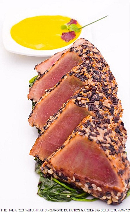 Halia Restaurant blue fin tuna tatak Black and white sesame seed crustedi marinated in soy,